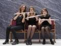 fluitsectie, gekke foto